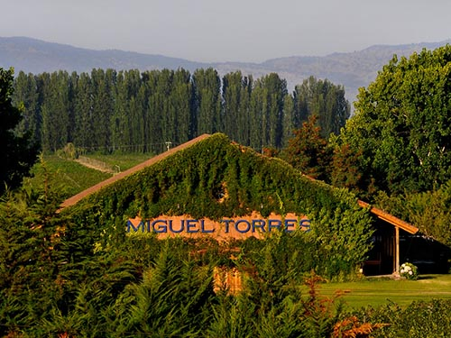 Miguel-Torres-Chile