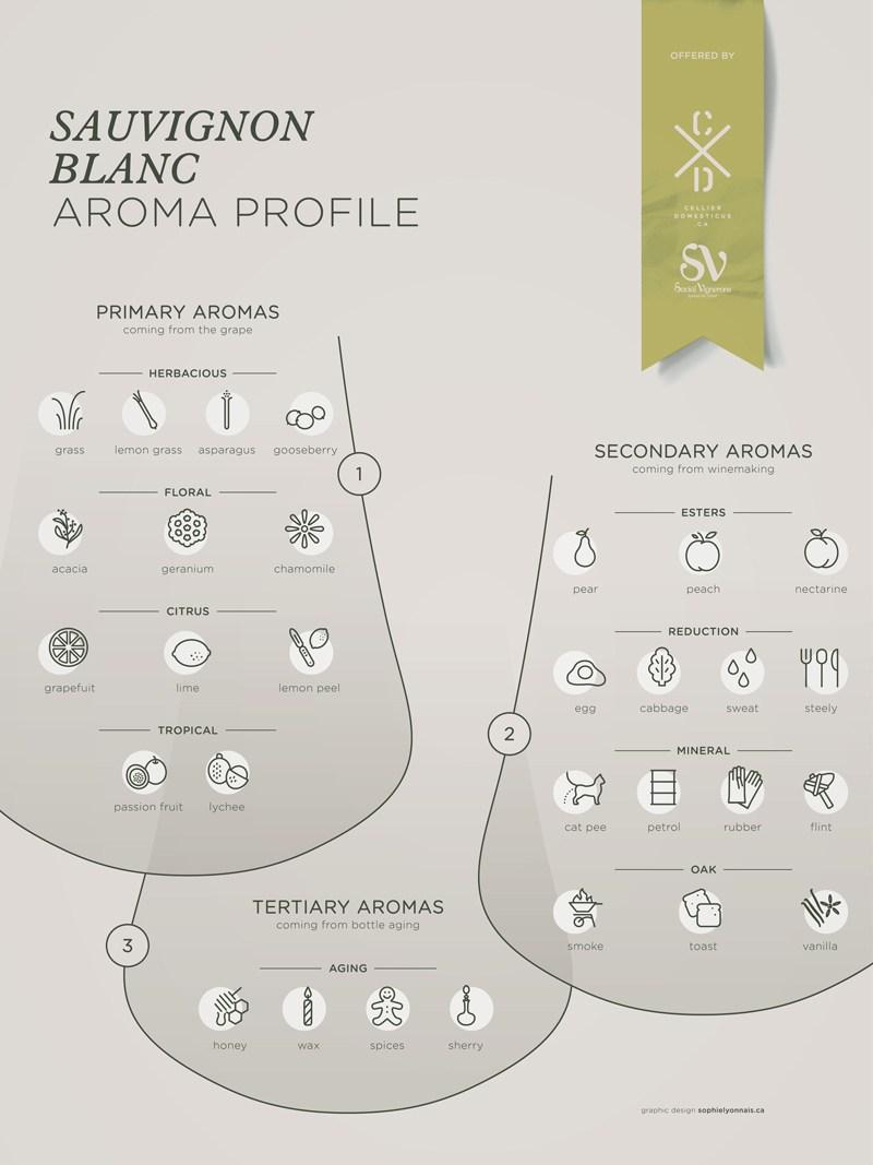 Sauvignon-Blanc-grape-variety-wine-aroma-profile-flavors-fruit-spices-Social-Vignerons