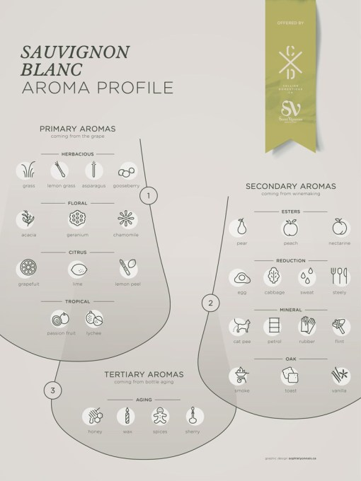 Sauvignon-Blanc-grape-variety-wine-aroma-profile-flavors-fruit-spices-Social-Vignerons