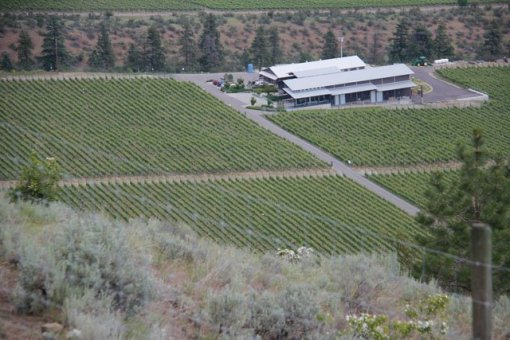 View-of-Culmina-Family-Estate-Winery-and-Arise-Bench-vineyard-from-above